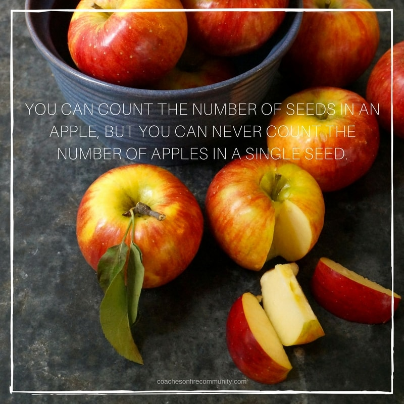 "'alt=""You-can-count-the-number-of-seeds-in-an-apple-but-you-can-never-count-the-number-of-apples-in-a-single-seed.-min"""